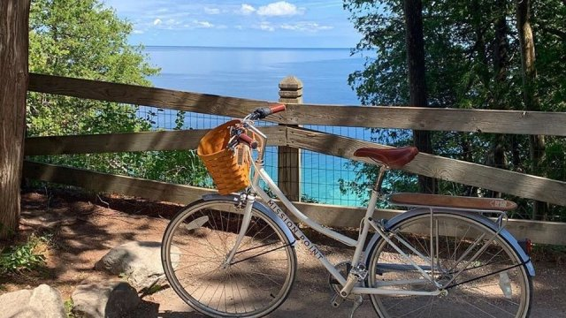 Bicycle overlooking trees and water